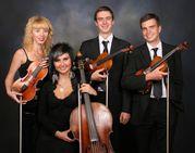 Скрипач,  струнное трио,  струнный квартет,  камерный струнный оркестр «V