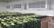 Холодильное оборудование для промышленных холодильных-складов