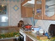 Сдам дом 3 комнаты,  пр Гагарина