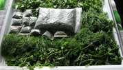 Укроп,  петрушка,  зеленый лук 2 сорта для переработки