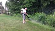 Уничтожение клещей,  комаров,  мух на открытых участках
