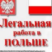 Работа на заводах и предприятиях в Польше
