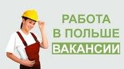 Работа и трудоустройство в Польше.