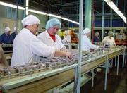 Работа для женщин на производство рыбной продукции