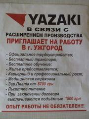 Работа на предприятии Ядзаки-Украина в г.Ужгород