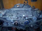 Запчасти на Subaru Legacy/Forester/Impreza/Tribeca всех кузовов