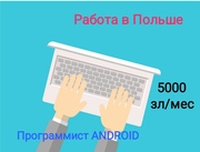 Программист Android,  Польша